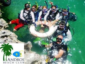 divinggroup1