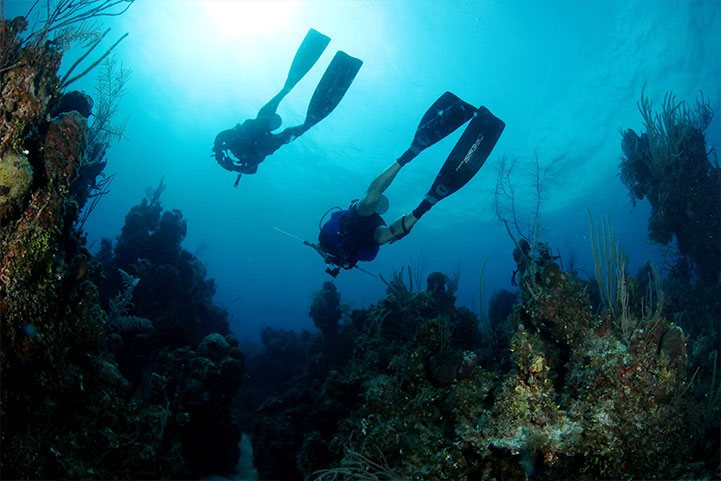 Go diving, Andros Island